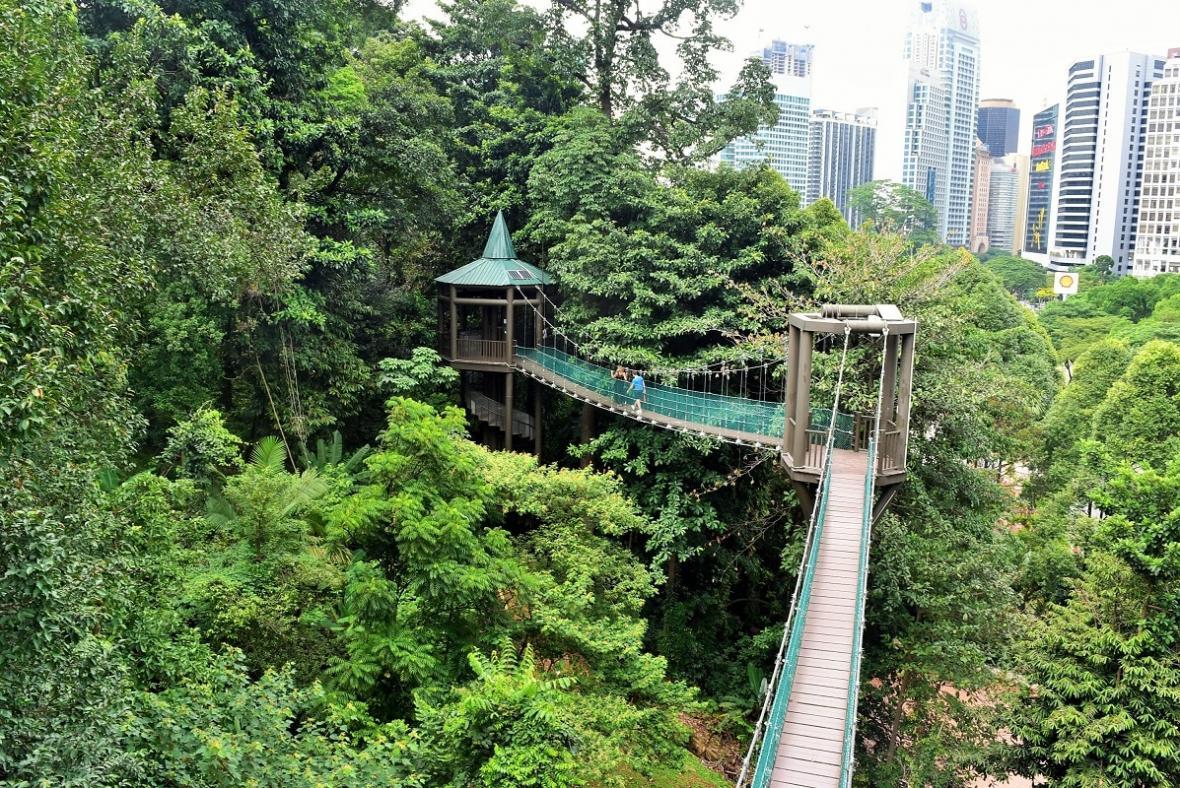 پارک جنگلی اکو (KL Forest Eco Park) کوالالامپور