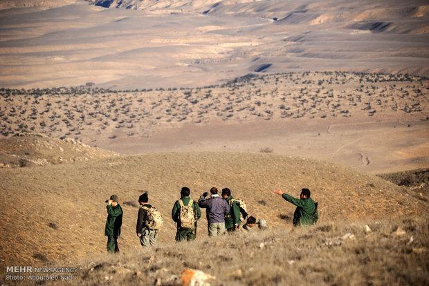 14.5 هکتار از جنگل های پارک ملی دز برطرف تصرف شد