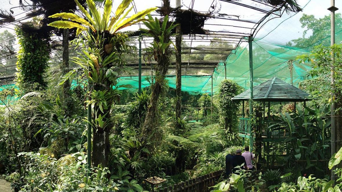 آشنایی با پارک پروانه کوالالامپور در تور مالزی