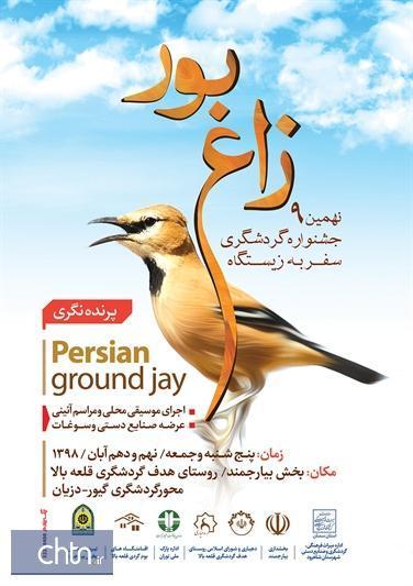 نهمین جشنواره گردشگری سفر به زیستگاه زاغ بور در شاهرود برگزار می گردد