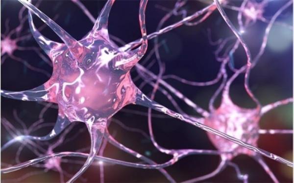 درمان ام اس با کمک مولکولی که سلول ها را بیدار می کند!