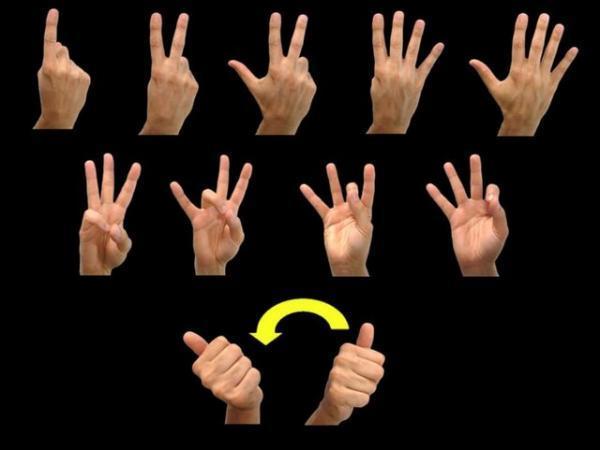 تکامل زبان اشاره از گذشته تا امروز